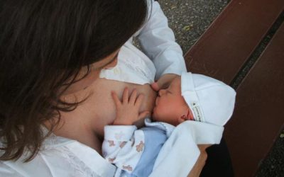 Un estudio explica cómo la leche materna fortalece las defensas del bebé
