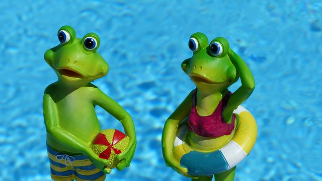 2 ranas en la piscina verano pelota flotador