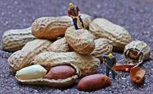 cacahuetes frutos secos comida alergia alimentaria