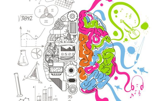 lactancia no influye en inteligenciaccerebro